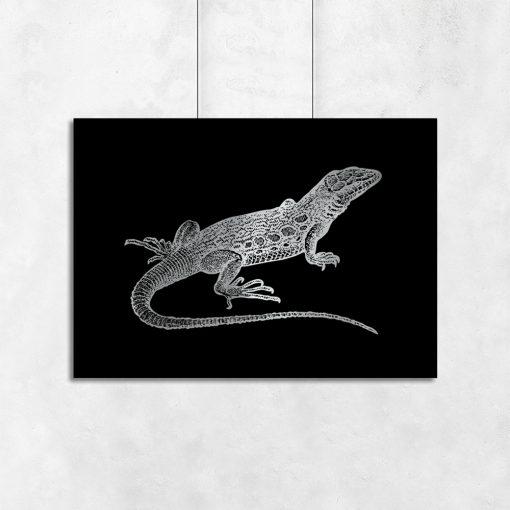 metaliczny plakat z jaszczurką