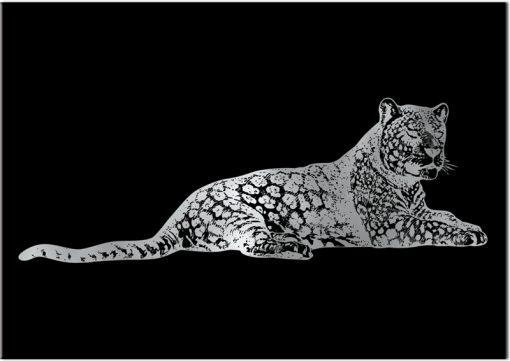 gepard srebrny na plakacie