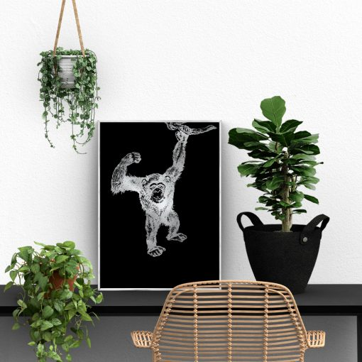 czarne tło plakatu z małpką
