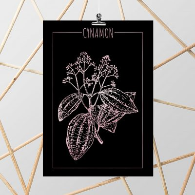 plakat z cynamonem