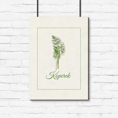 koperek zielony na plakacie