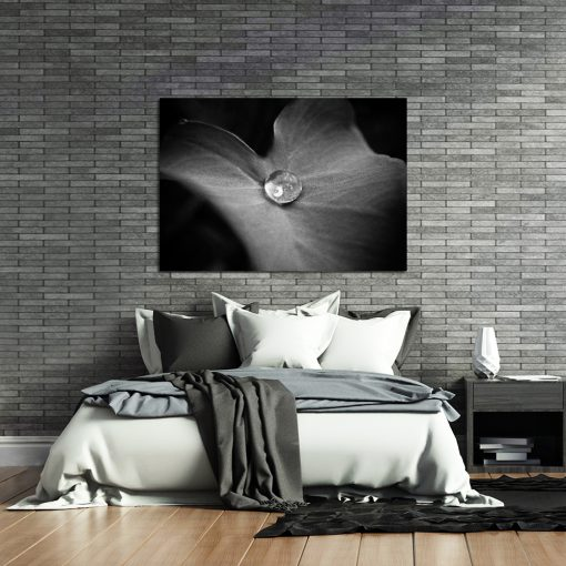 Obraz czarno-biały z motywem liścia do sypialni