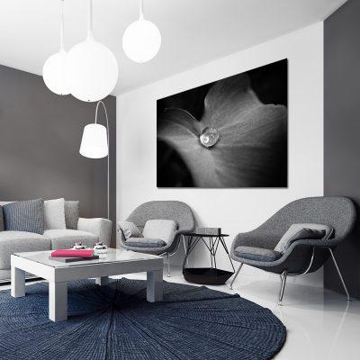 Czarno-biały obraz na ścianę do salonu