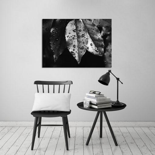 Obraz w kolorze czarno-białym do salonu