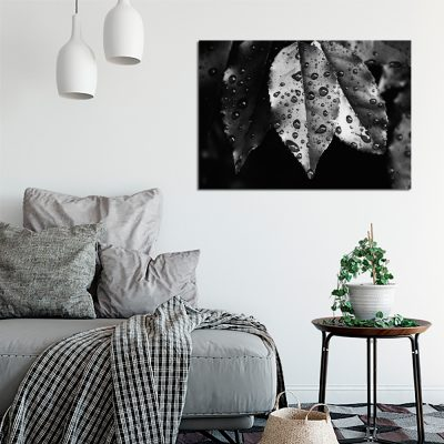 Obraz czarno-biały do salonu