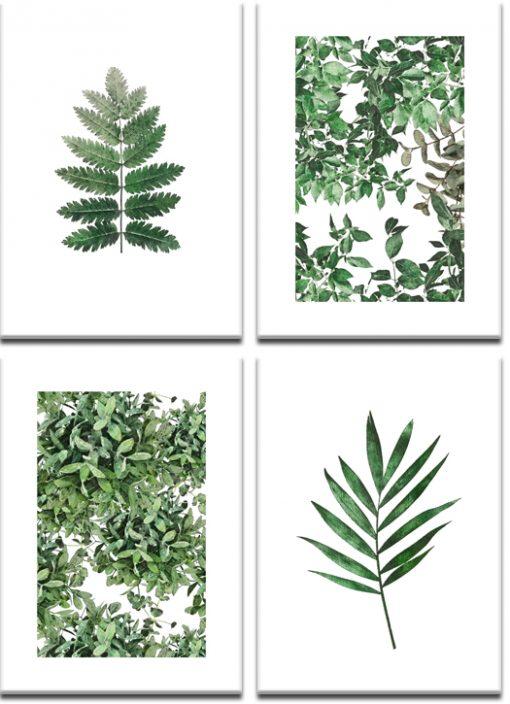 botaniczne plakaty w zestawie