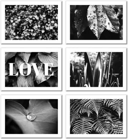 roślinne plakaty jako jeden zestaw