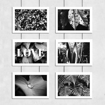 roślinna dekoracja biało-czarna