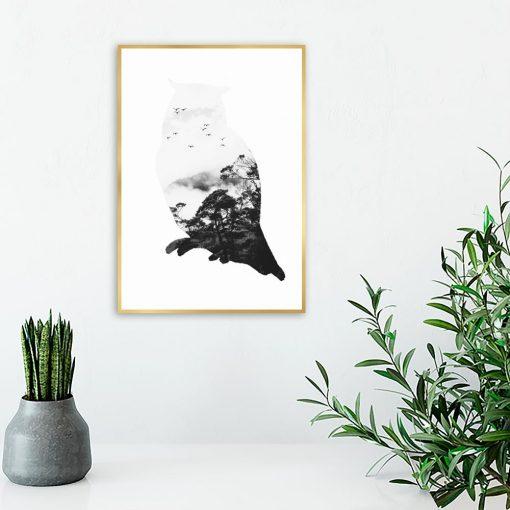 salon z sową