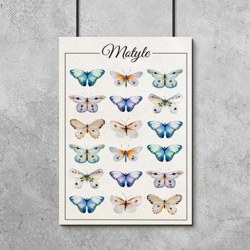 salon z motywem motyli