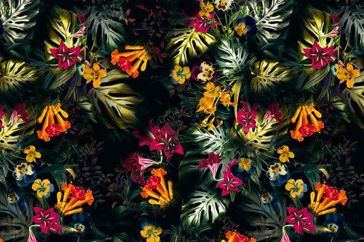 tropikalne paprocie i kwiaty