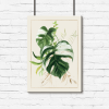 motyw tropikalnego plakatu