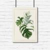 tropikalne liście na plakacie
