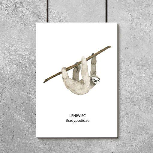 Plakat z ilustracją leniwca