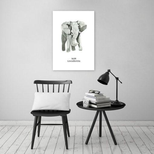 Plakat ze słoniem do salonu