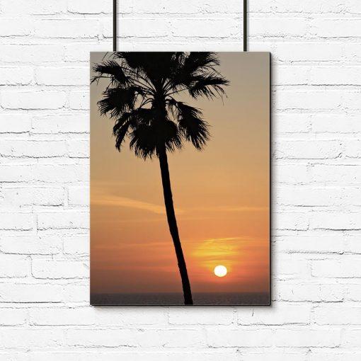 Plakat palma i zachód słońca