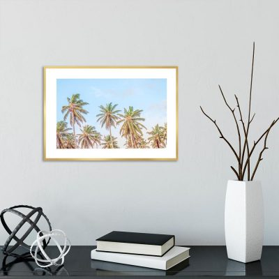 Plakat z palmami