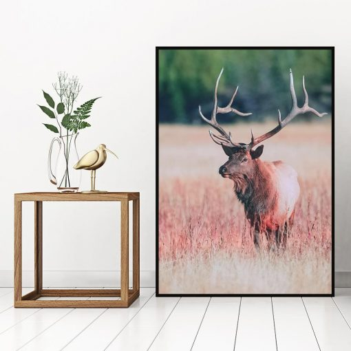 Plakat motyw jelenia