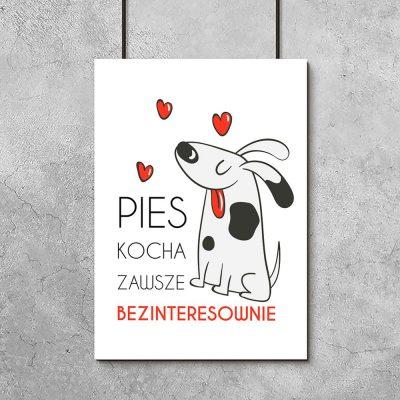 Plakat ilustracja psa i napis