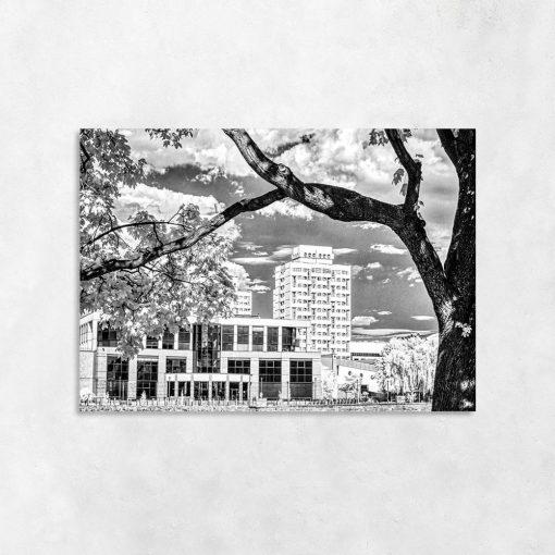 Obraz budynki i drzewo