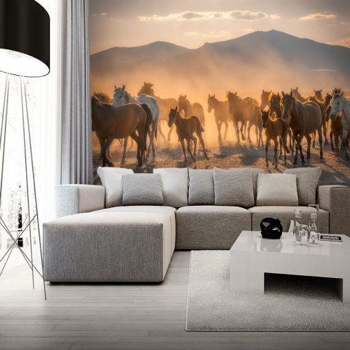 Fototapeta konie i góry