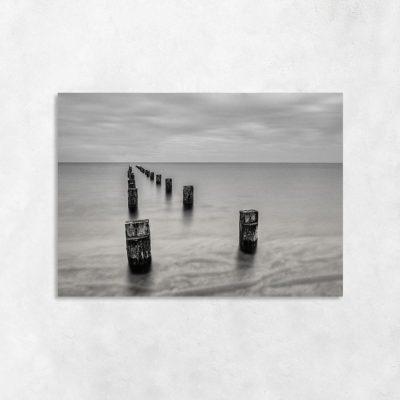 Szary obraz z morzem