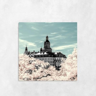 Obraz z motywem drzewa i zamku