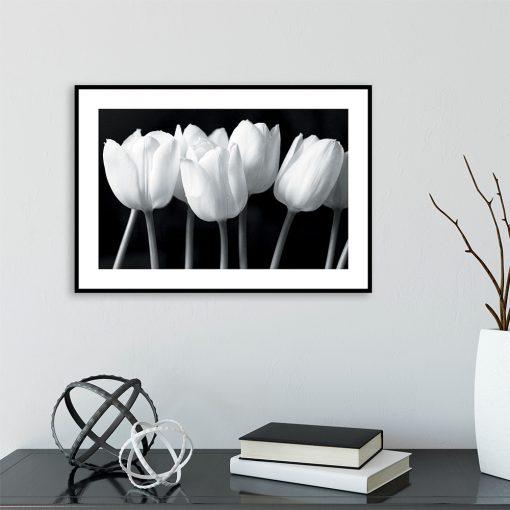 bukiet tulipanów na plakacie
