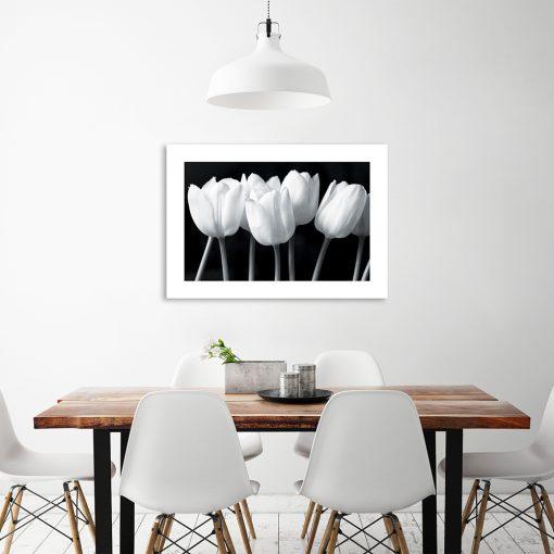 plakat z motywem kwiatów tulipanów