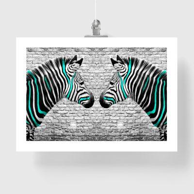 plakat zebry, mur, turkusowe paski
