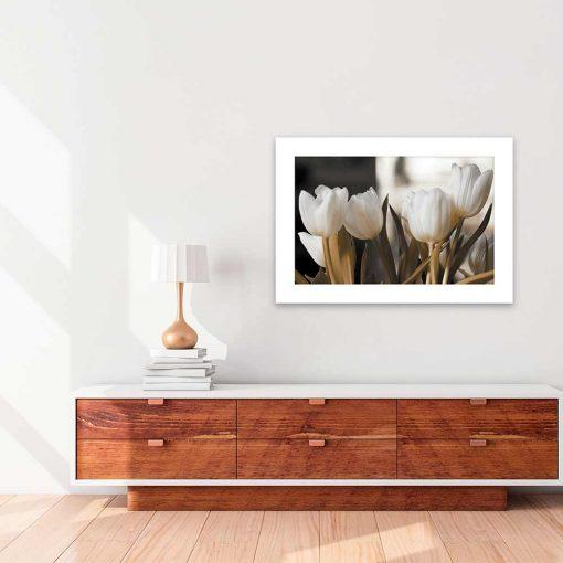 białe tulipany na plakacie