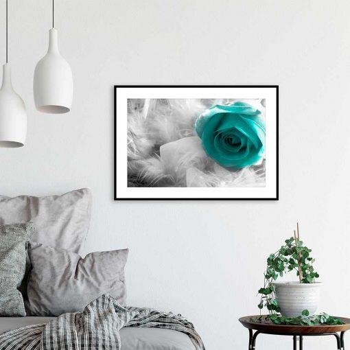 kolorowa róża plakat