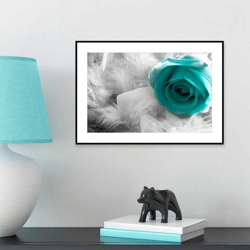 motyw róży i piór na plakacie