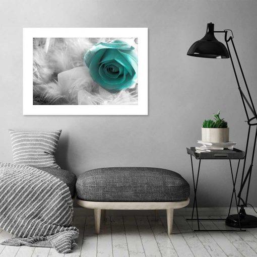 plakat róża pióra