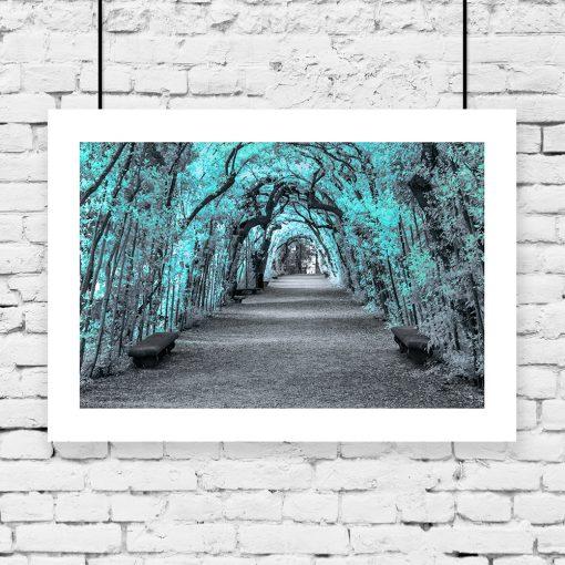 alejka parku z drzewami na plakacie