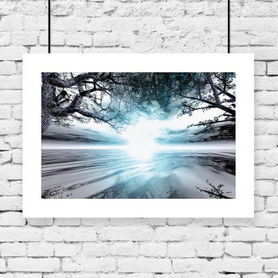 drzewa, słońce i woda na plakacie