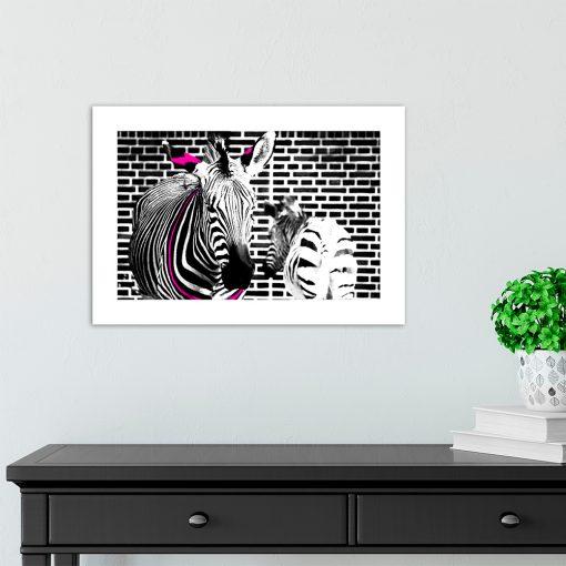 czarno-biały plakat z zebrą