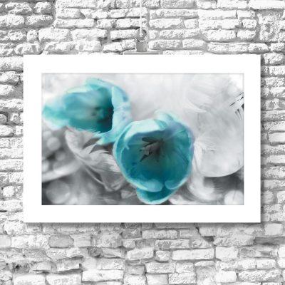 plakat z motywem tulipanów