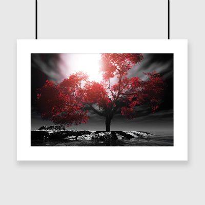 plakat z drzewem nad wodą