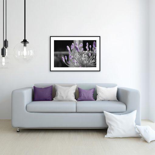 plakat z kwiatem na ścianę w salonie