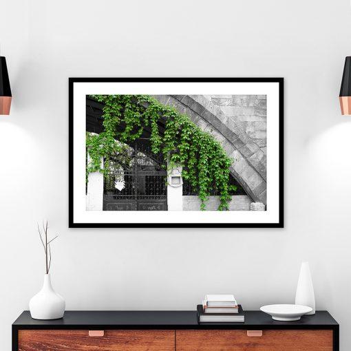czarno-biały plakat z motywem roślinnym