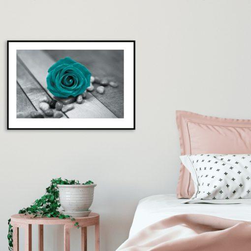 plakat kwiat kamyki