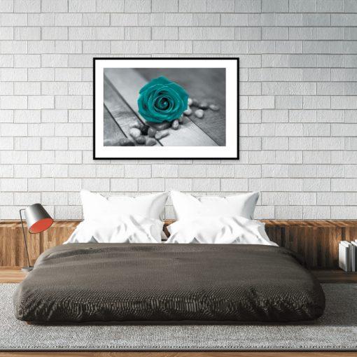 plakat turkusowa róża