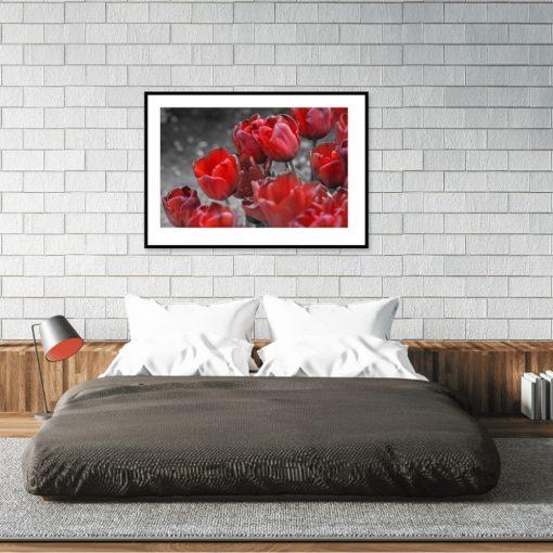plakat z motywem czerwonych kwiatów