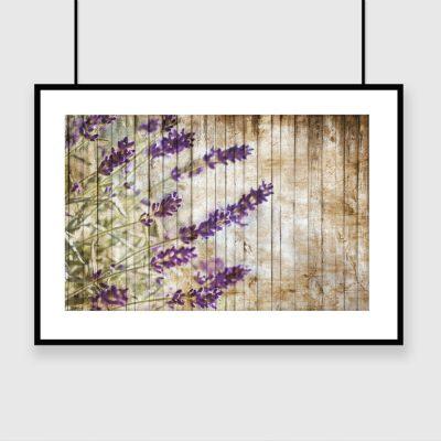 plakat motyw kwiatowy