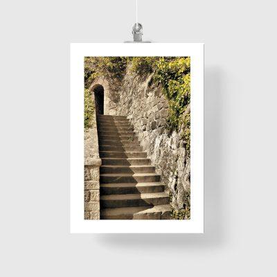 plakat z motywem schodów i drzew
