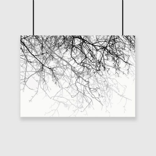 czarno biały plakat z gałązkami