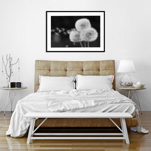 plakat czarno-biały do sypalni