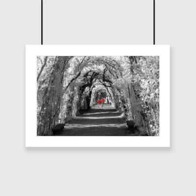 plakat tunel z drzew
