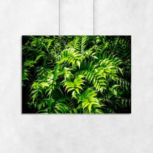 zielony plakat z motywem roślinnym